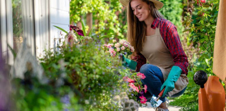 Amenajarea grădinii – idei cu buget redus și obiecte DIY