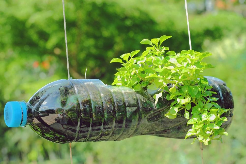 ghivece pentru flori din borcane