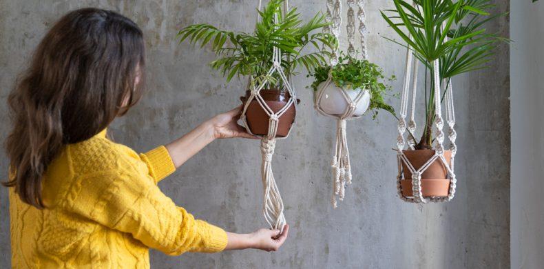 Ghivece decorative: cum să le folosești într-un mod ingenios – idei pentru acasă