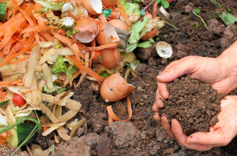 cum sa faci compost din deseuri menajere