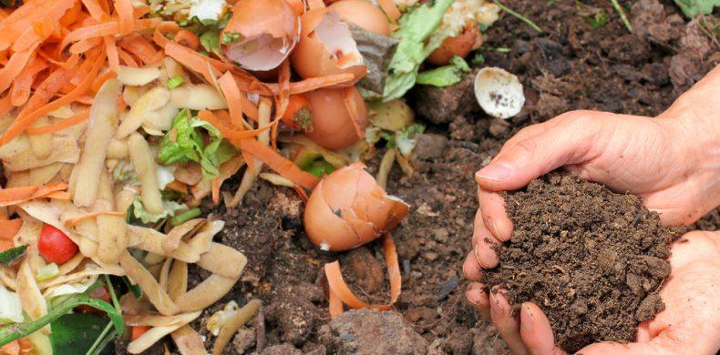 Cum să faci compost din deșeurile menajere din casă – sfaturi practice