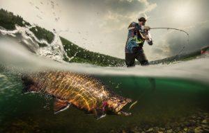 carlige pescuit